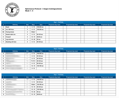 3-daags-trainingsschema-spiermassa-protocol